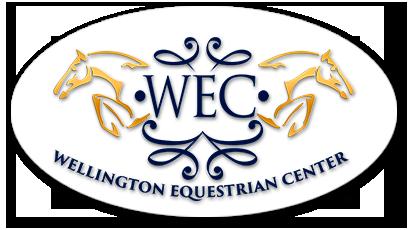 Logo WEC